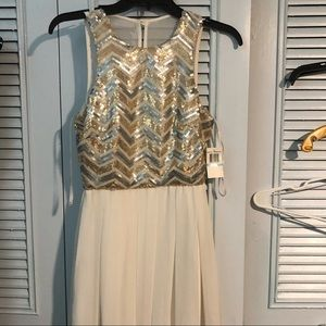 Homecoming Dress/ Party Dress 🎉